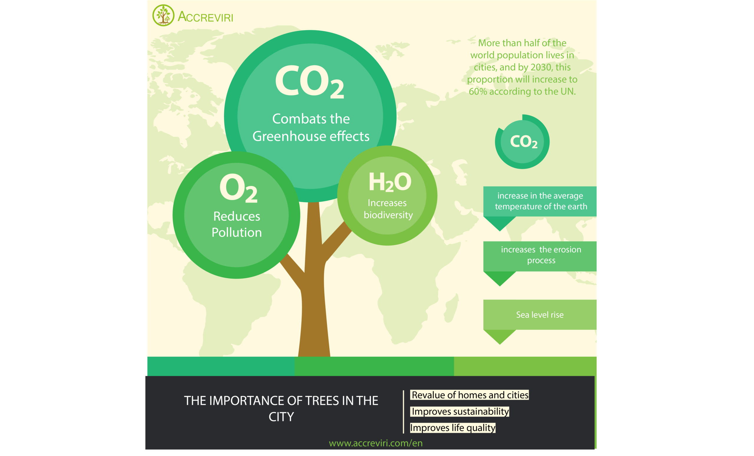 6 Razones para plantar árboles en la ciudad