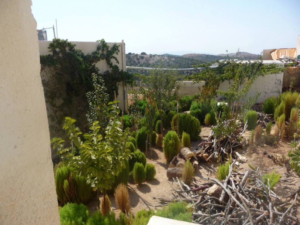 desierto a oasis 2014