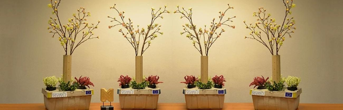 Growboxx Plant Cocoon